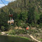 【タスマニア】世界最長のチェアリフトに乗ってカタラクト渓谷を楽しもう!【ロンセストン】