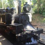 【メルボルン】ヤラバレーワイナリー&パッフィンビリー鉄道を1日でまわってみた。行き方&観光おすすめスポット6選