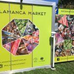 【タスマニア】週に一度のイベント!サラマンカマーケットは必ず行くべき!無料で楽しめてお得【ホバート】